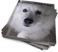 separation anxiety in dogs ebook