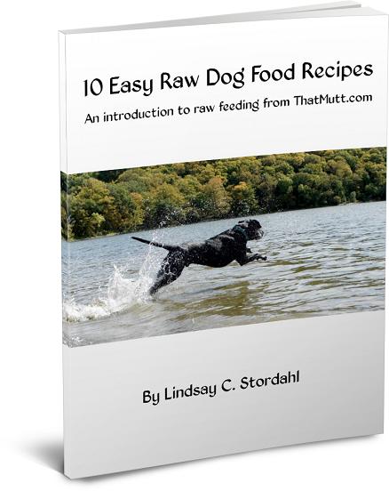 Dog Raw Food Diet Recipes Uk
