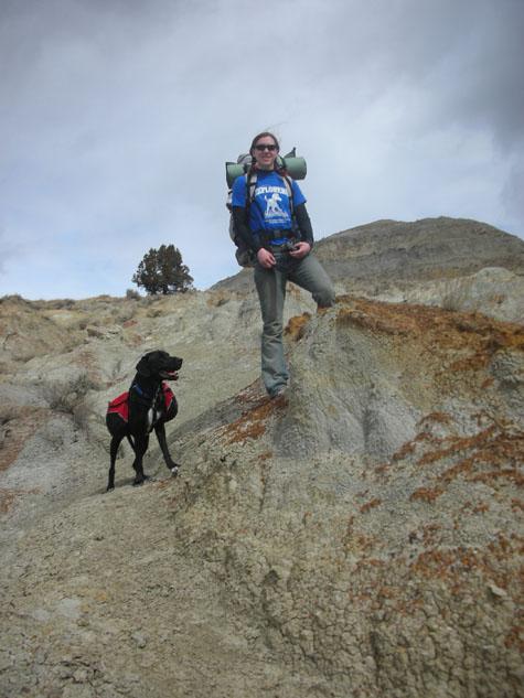 Black lab wearing a dog backpack while hiking