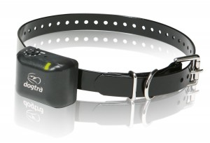 Dogtra dog shock collars to stop a dog's barking
