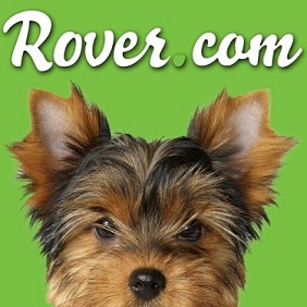 Become a pet sitter with Rover.com