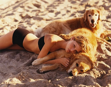 Hot girl and her golden retrievers on the beach