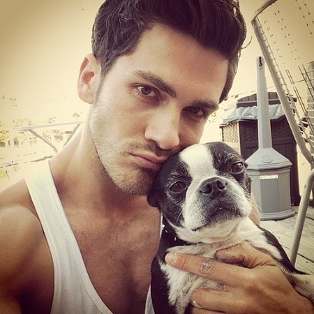 Who's cuter the guy or the Boston terrier puppy?