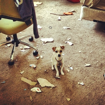 Chi mix ripped up the room