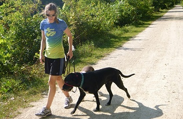 Woman walking her black Lab mix