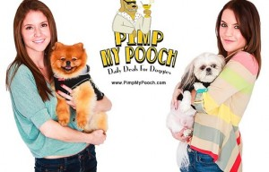 PimpMyPooch.com – the daily deal site for dogs and their owners