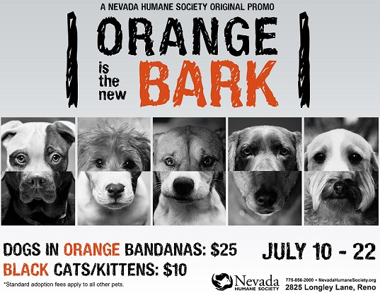 Orange is the New Bark Poster Nevada Humane Society