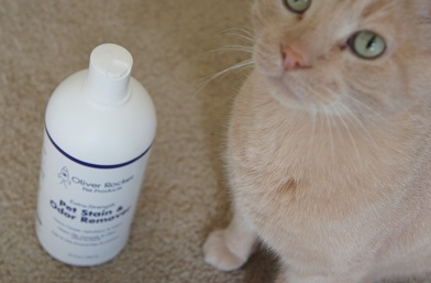 Pet stain remover for cats