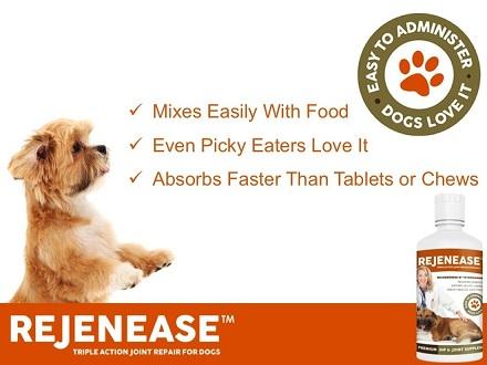 Remenease liquid glucosamine for dogs