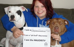 Correcting incorrect stereotypes about pitbulls – the Majority Project