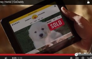 What do you think of GoDaddy's Super Bowl puppy ad?