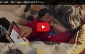 PuppySwap – the new puppy subscription service