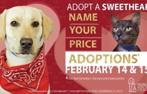 Animal shelters get creative with these Valentine's adoption specials