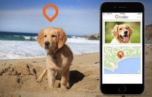 Where's Nellie Dog GPS Tracking App Helps Find Lost Dogs