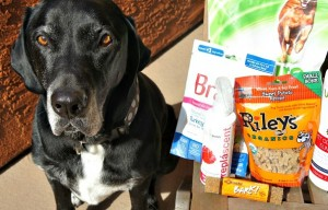 #PetPawLooza What Does a $200 Pet Gift Basket Look Like? Enter to Win