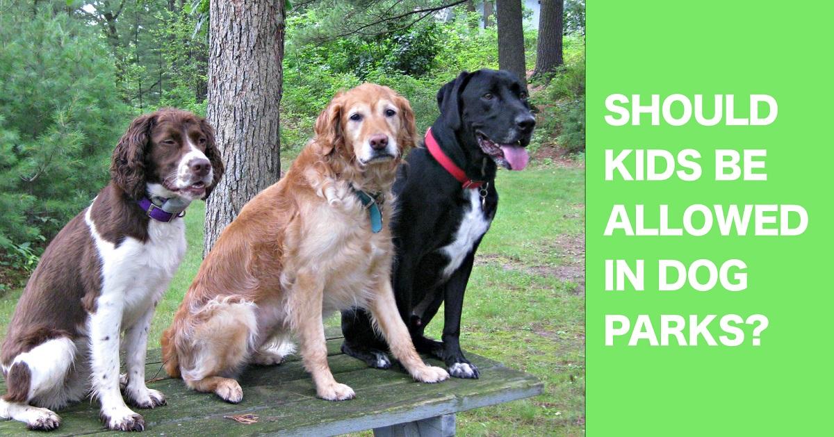 Should kids be allowed in dog parks