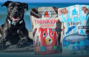 Win Plato Pet Treats And Help Shelter Dogs #PlatoWagsBack