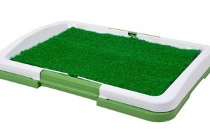 10 Reasons to Buy Fake Grass Pee Pads for Your Dog