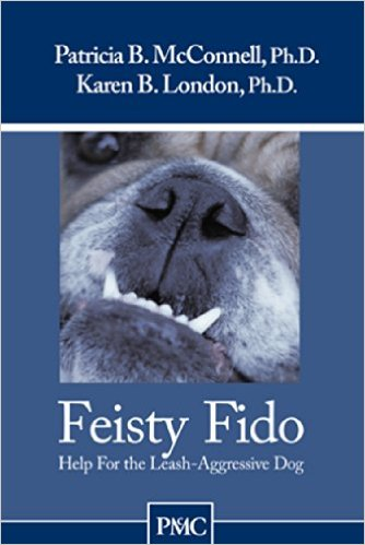 Feisty Fido
