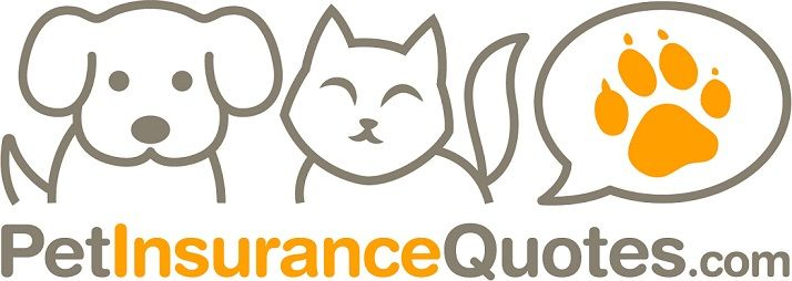 Pet Insurance Quotes logo