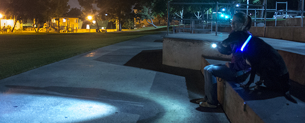 LED dog collar and LED flashlight