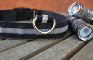 20 reasons you should buy my LED dog collar and flashlight for $1
