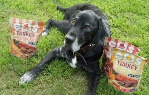 Should You Eat Before Your Dog? Plato Pet Treats Giveaway