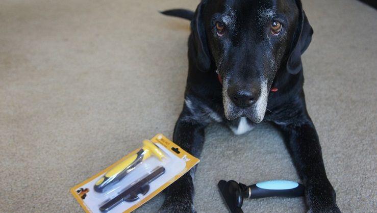 MIU Pet de-shedding tools