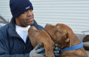 Surrendering Your Dog to a Shelter or Rescue Group