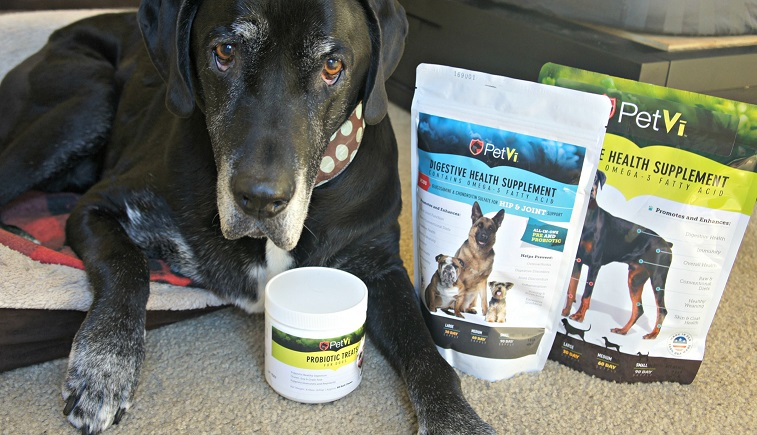 PetVi Review - Ace with PetVi products