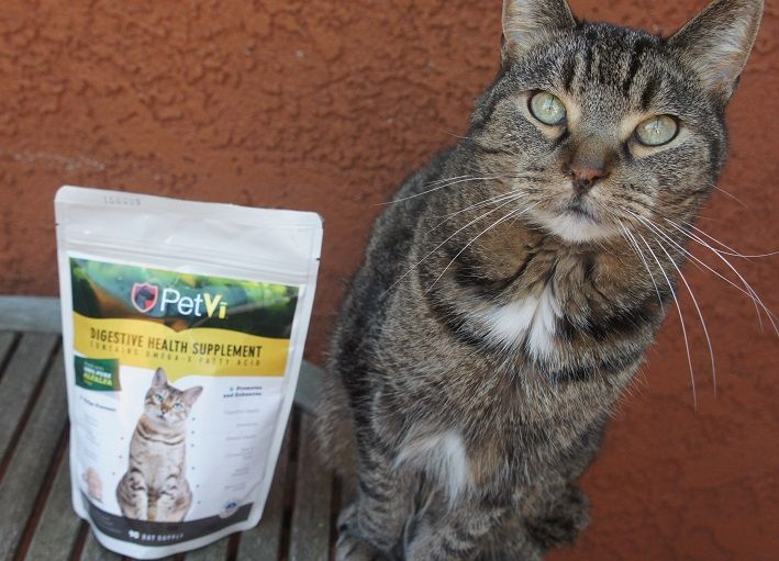 PetVi makes supplements for cats