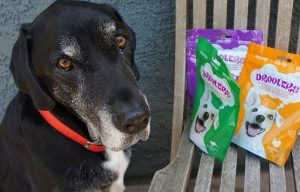 Droolers Treats Review and Giveaway – 10 winners