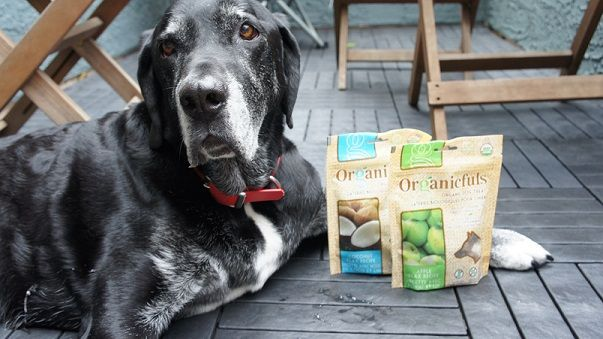 My dog Ace with Organicfuls treats
