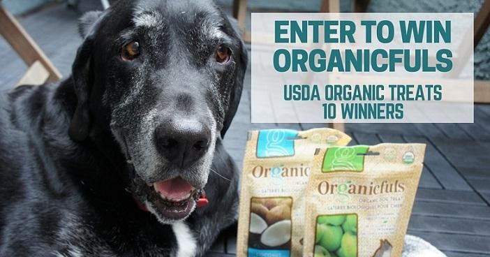 Organicfuls dog treats review