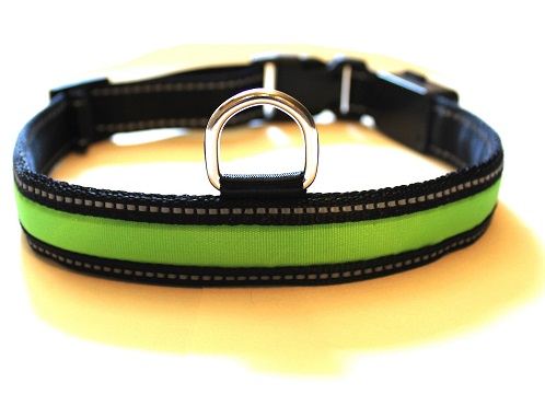 usb rechargeable led dog collars from petabunga that mutt. Black Bedroom Furniture Sets. Home Design Ideas