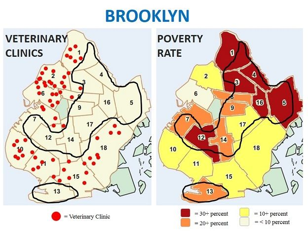 Brooklyn poverty rate vs. Brooklyn veterinary clinics