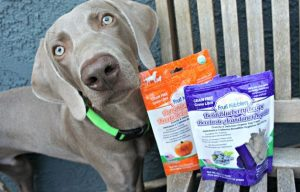Fruit Nibblers Dog Treats Review and Giveaway – 10 Winners!