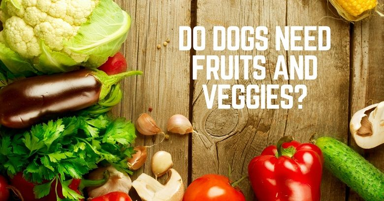 Do dogs need fruits and veggies?
