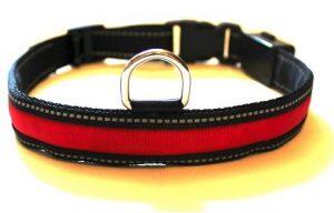 LED Dog Collars for Morning Dog Walking