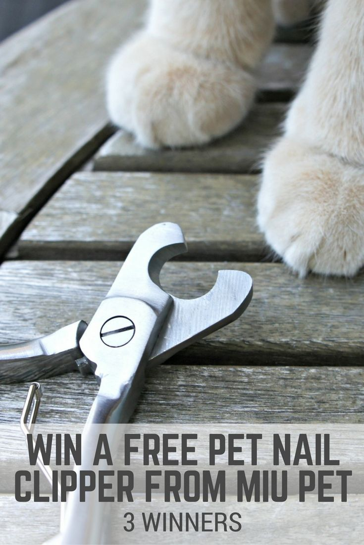 Win a pet nail clipper from MIU PET - 3 winners