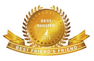 best-friends-friend-gold