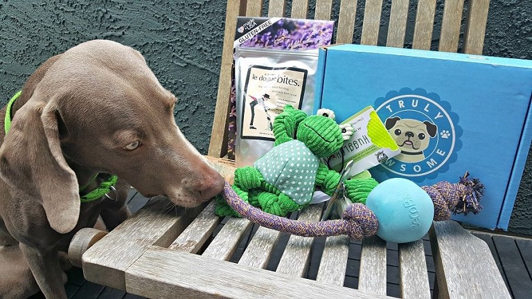 Truly Pawsome subscription box review