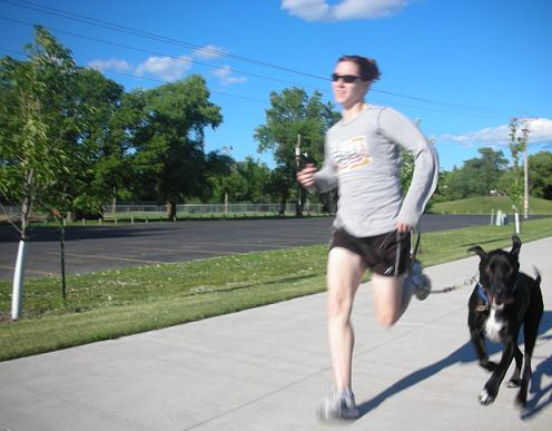 Starting a business running with dogs – best job ever!