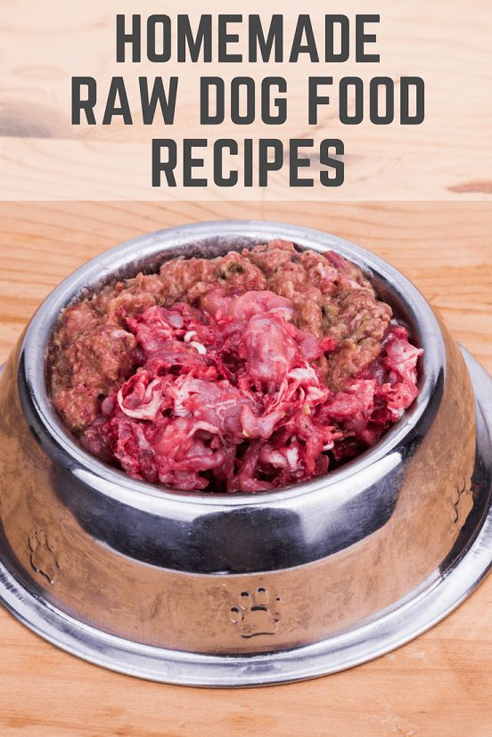 Veterinarian Recommended Homemade Dog Food Recipes