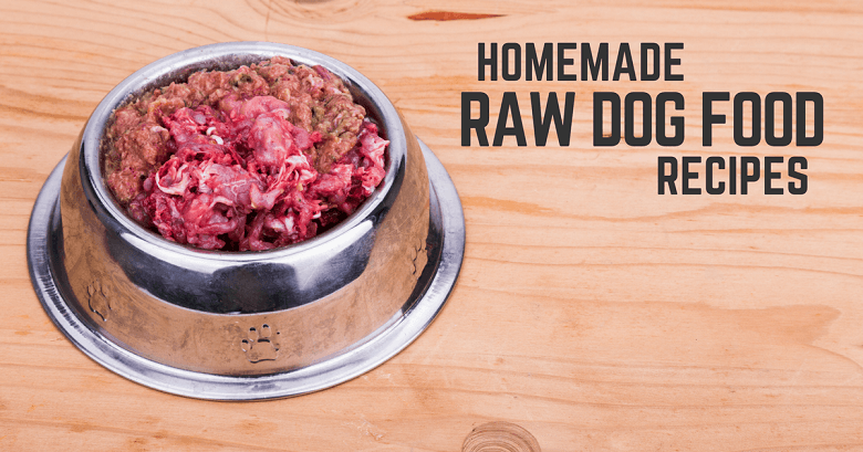Diy homemade raw dog food recipes thatmutt the main downside to feeding commercial raw dog food is the price ace is a 67 pound black lab mix a 6 pound bag of commercial raw food is roughly 27 on forumfinder Gallery