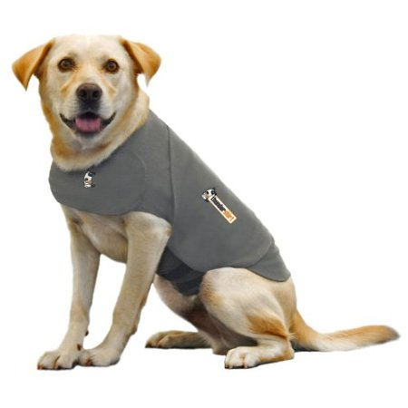 Dog ThunderShirt to help a dog scared of fireworks