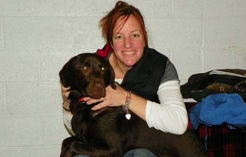 Re-homing a chocolate Lab