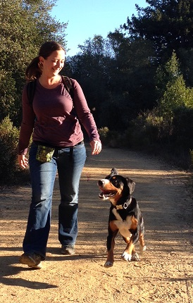 Linda and her hyper dog, the Entlebucher mountain dog Alfie
