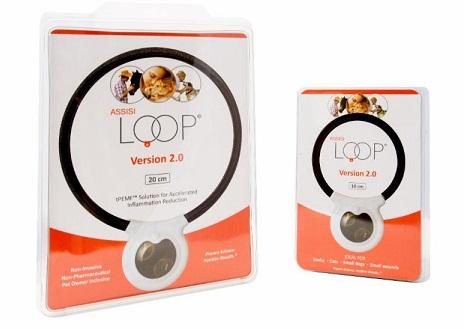 Assisi Loop