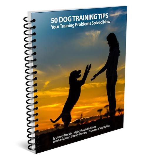 Dog training ebook